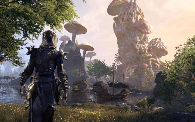 The Elder Scrolls 6 coming to Xbox exclusive soon